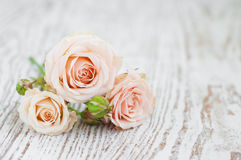 Light Pink roses. Pink roses on  old white wooden background Royalty Free Stock Photos