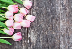 Light pink tulips on the oak brown table with white sheet of pap Stock Photo