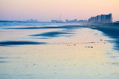 Light pinks on the beach Royalty Free Stock Image