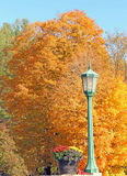 Light pole and Fall colors, Grafton, Vermont Royalty Free Stock Image