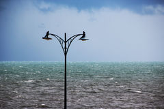 Light Poles at the Beach on a Stormy Day Stock Photography