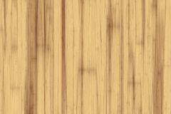 Light poplar wood texture background. Close-up view vector illustration