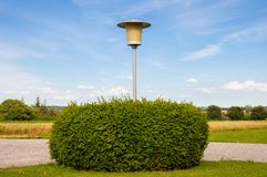 Light post in a shrub Stock Photography