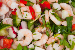 Light prawn salad lunch. Mixed seafood lunch with prawns and watercress with cucumber and salad royalty free stock photo