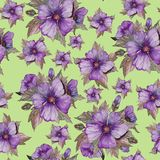 Light purple malva flowers with brown leaves on green background. Seamless floral pattern.  Watercolor painting. Hand drawn illustration. Can be used as for Stock Photos