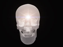 Light radiates from skull. Light radiates from semitransparent skull Royalty Free Stock Images