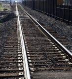 Light Rail Tracks Stock Image