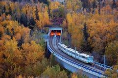 Light rail transit in edmonton. A light rail train passing through the autumn forest, city edmonton, alberta, canada Royalty Free Stock Photos