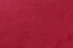 Light red leather texture background. Closeup photo. Royalty Free Stock Photo