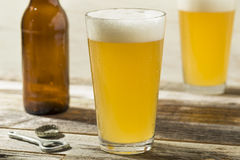 Light Refreshing Summer Craft Beer. In a Pint Glass stock image