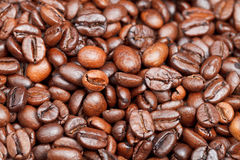 Light roasted coffee beans close up Stock Photo
