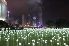Light Rose Garden in Hong Kong Stock Photos