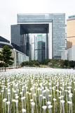 Light Rose Garden, by Pancom (South Korean Creative Agency). Art installation marks the first overseas stop of a world tour stock photo