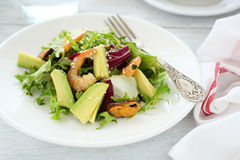 Light salad with avocado and prawns Stock Image