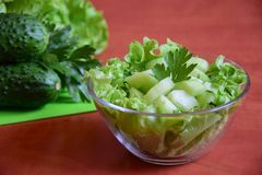 Light salad of fresh cucumbers. Salad and parsley in the salad-bowl Stock Photos