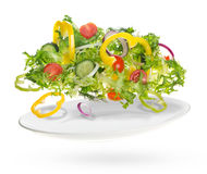 Light salad of fresh vegetables Royalty Free Stock Photography