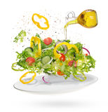 Light salad of fresh vegetables Stock Photography