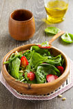 Light salad with spinach Royalty Free Stock Image