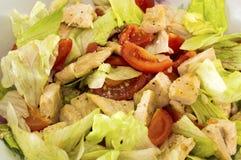 Light salad Stock Photos
