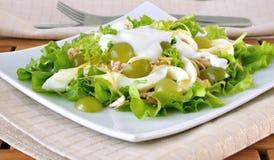 Light salad with yogurt Stock Images