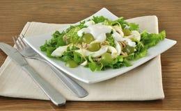 Light salad with yogurt Stock Image