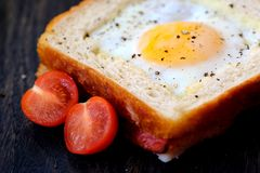 Light sandwich with egg and tomatoes. Good quality bright and positive close up photo of a light sandwich: classic white toast with buttered golden edges and a Royalty Free Stock Photography