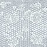 Light seamless lace fabric with floral pattern. Royalty Free Stock Photography