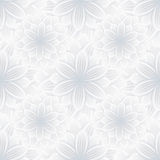 Light seamless pattern with flower chrysanthemum Royalty Free Stock Image