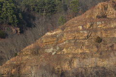 Light of setting sun on bluff. A bluff with pine forest during winter Royalty Free Stock Photos