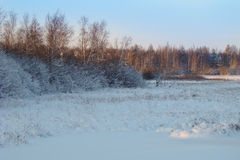 Light of the setting sun. Winter landscape on the background light of the setting sun Royalty Free Stock Photography