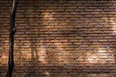 Light and shade on brick wall Stock Photo