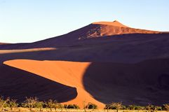 Light and shade on dunes in Namibia. Dune in Namib Desert, Namibia Royalty Free Stock Photo