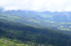 Light and Shade in Valley with Greenery All Around - Green Earth with Mountains and White Clouds - Natural Kerala Background royalty free stock images