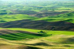 Light and shadow. Of wheat fields in colfax, washington, usa royalty free stock image