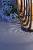 Light and shadow from thai folk lamp. With flower background Stock Images