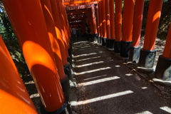 Light and shadow in thousands of Torii Royalty Free Stock Photo