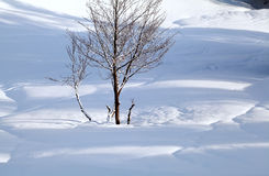Light and shadows on snowy hills Stock Images