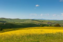 Light and shadows on Tuscan hills Stock Photography