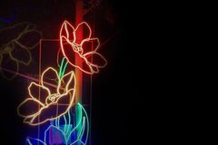 Light in shape of a flower in night  beautiful background.  Royalty Free Stock Photography