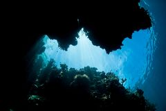 Light Shines Into Dark Underwater Crevice in Raja Ampat Royalty Free Stock Photography