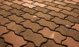 The floor brick of texture Stock Images
