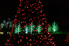 Light show in garden setting at holiday time Stock Photos