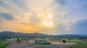 Light through sky above corn fields Royalty Free Stock Photography