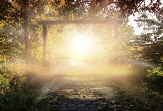 Steps leading up to the sun . Way to God . royalty free stock image