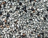 Light small pebbles. Stock Image