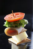 Light Snack - Cheese Sandwich Royalty Free Stock Photography