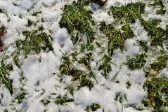 Light snow on the ground. Light snow dusting the ground Stock Photography
