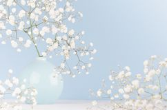 Light soft elegant home decor with small airy flowers in glossy pastel blue vase on wood table and blue wall. stock images