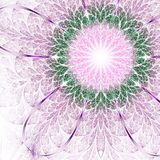Light and soft fractal flower Stock Photography