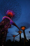 Singapore -Light and sound show Royalty Free Stock Photography